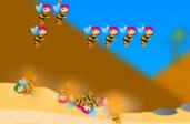 Территория пчел