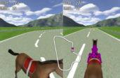 Гонки на лошадях