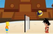 Волейбол с Бартом